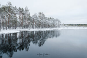 winter in estonia
